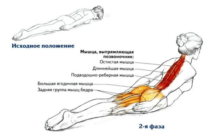 Всего 1 упражнение, которое исправит вашу осанку!