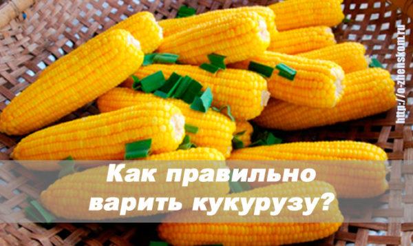Так вкуснее! Единственно правильный способ варить кукурузу