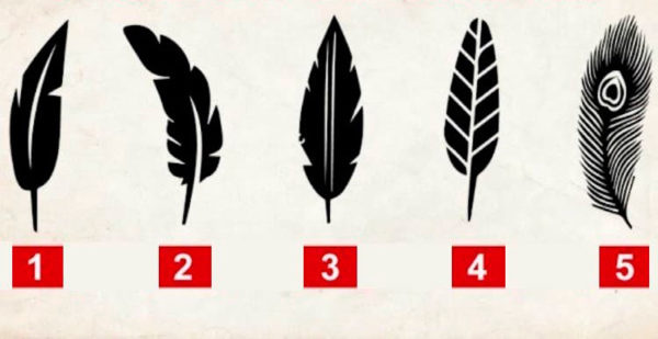 Тест, раскрывающий личность - просто выбери свое перо!