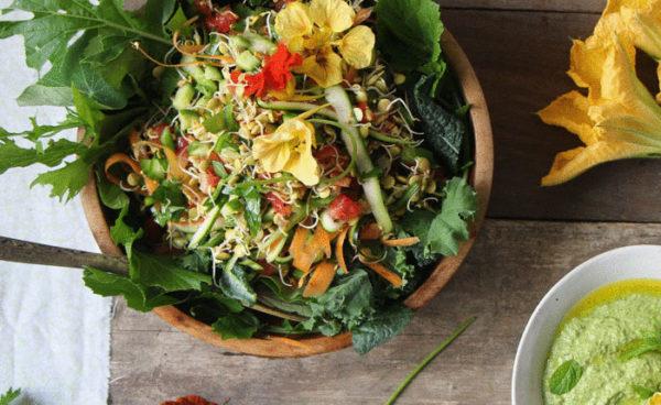 Биогенная еда против старения - самый дешевый способ омоложения!