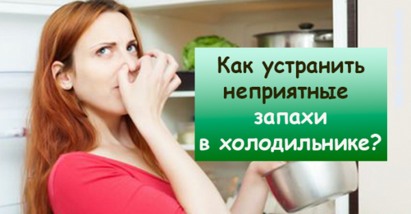 Как устранить неприятные запахи в холодильнике: 10 лайфхаков, которыми пользуются даже шеф-повара!