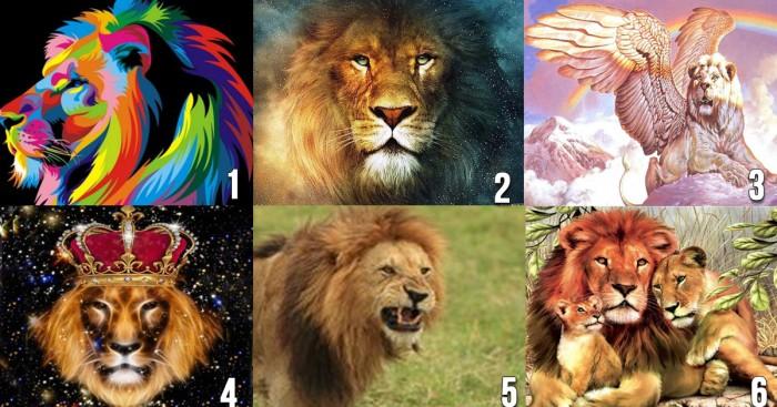 Выбранный лев подскажет, какой мужчина нужен именно вам