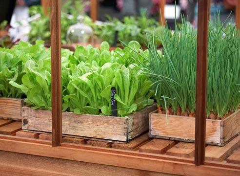 Лунный календарь садовода иогородника наапрель 2019 года - чтобы получить отменный урожай!