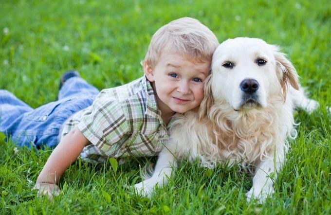 Собаки и дети: когда и какую породу собак можно завести ребёнку?